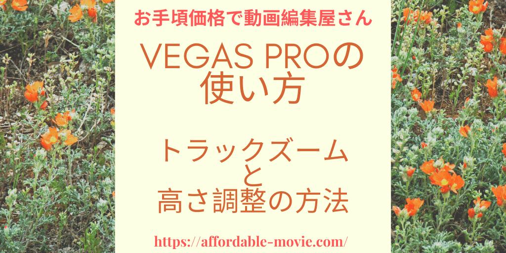 vegas-zoom-track